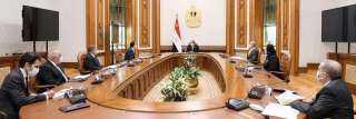 الرئيس السيسي يوجه بتوطين صناعة السيارات الكهربائية في مصر بشكل متكامل يتخطى مراحل التجميع