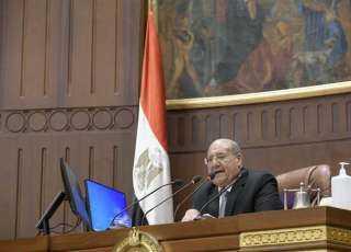 مجلس الشيوخ يعلن خلو مقعد النائب الراحل فاروق مجاهد