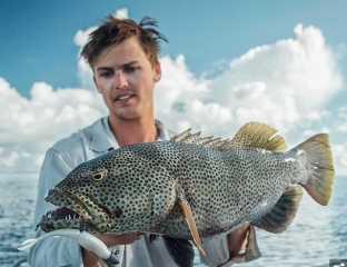 شاهد | صياد يواجه 3 أسماك قرش أثناء محاولتها انتزاع سمكة من يديه فى أستراليا